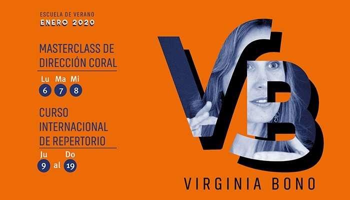 web Escuela de Verano Virginia Bono